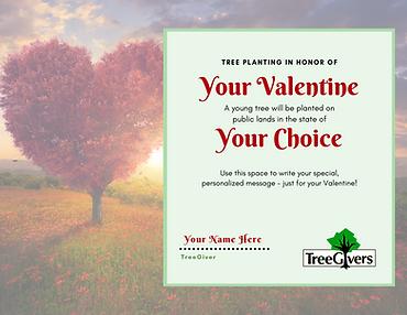 Valentine's Day Tree Planting Gift