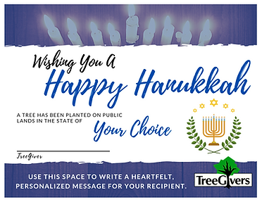 Plant a Tree for Hanukkah as a thoughtful green gift