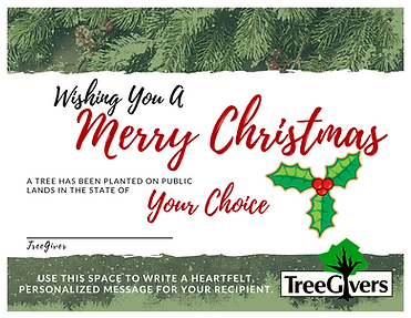 Redesigned Christmas Certificate.png