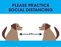 social_distance.png