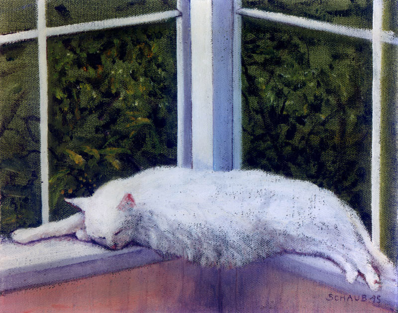 'Allie Napping'