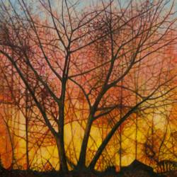 Sunset chez Mackay