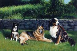 'Deep River Dogs'