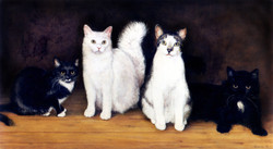 'Four Cats'