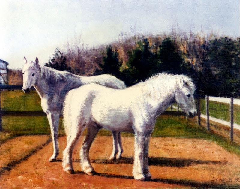 'White Horse & Pony'