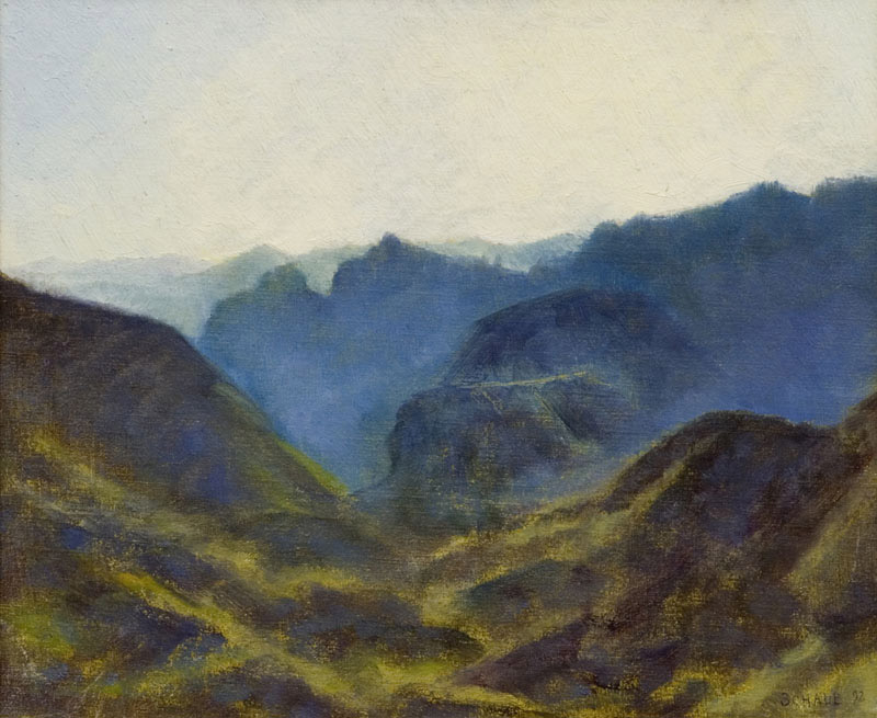 'View from Mt. Lemmon AZ'