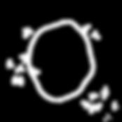 circle2_spatter_white.png