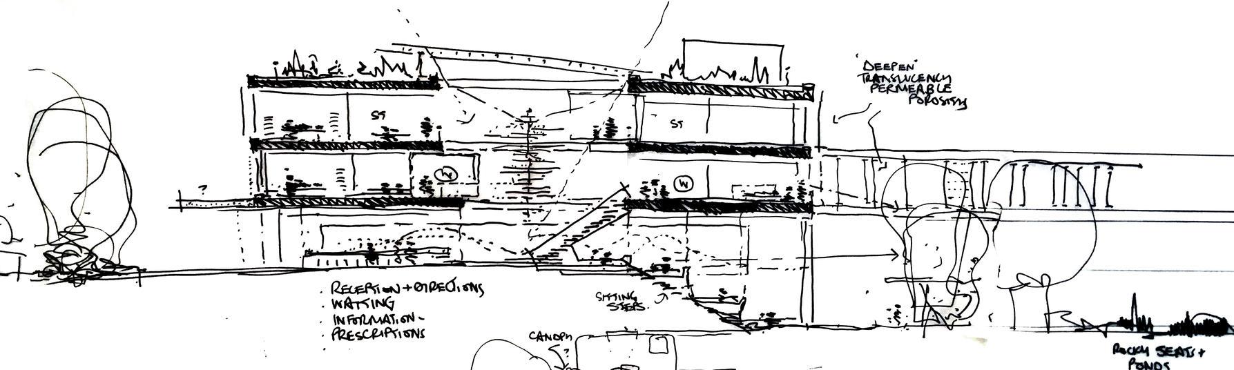 4 sketch.jpg