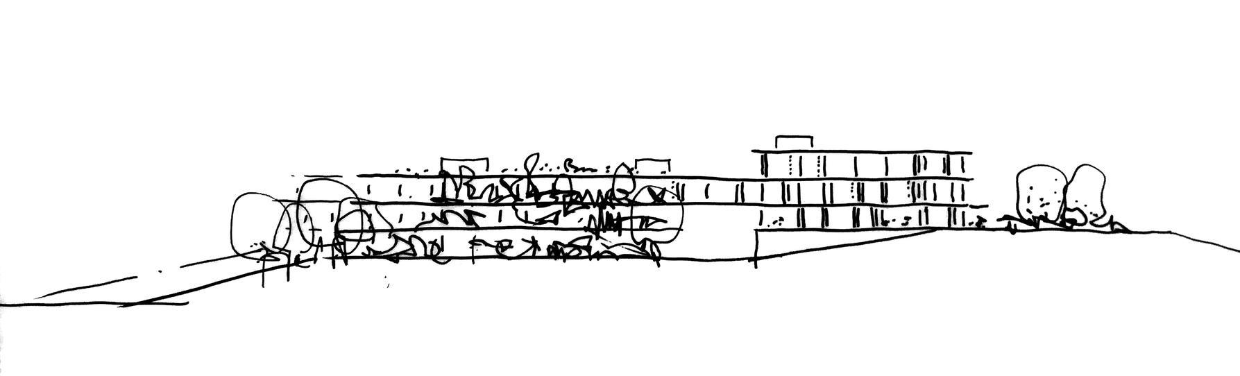 2 sketch.jpg