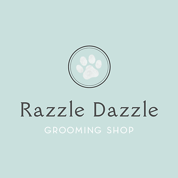 Razzle Dazzle-Teal Background.png