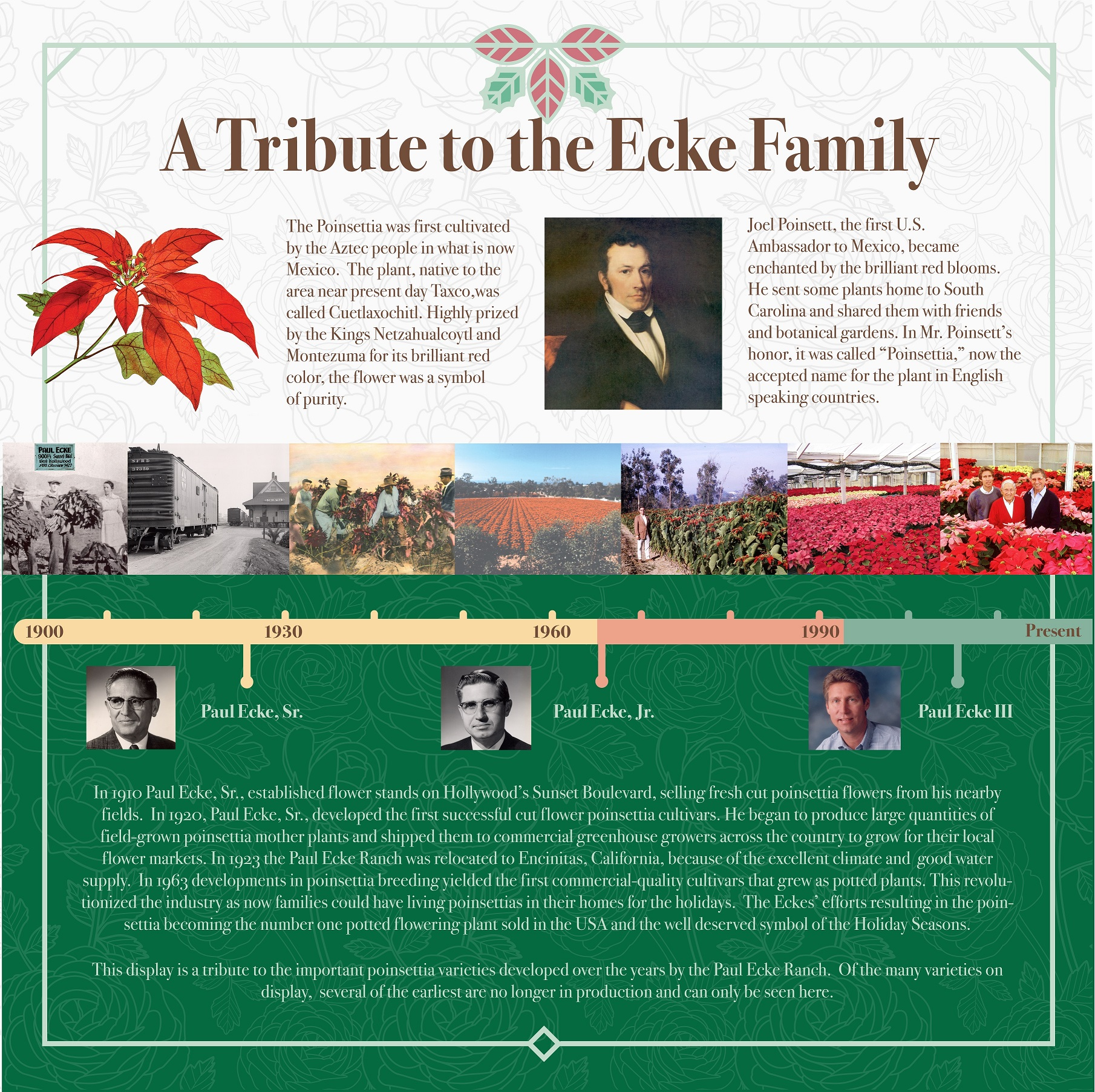 Tribute to the Ecke Family