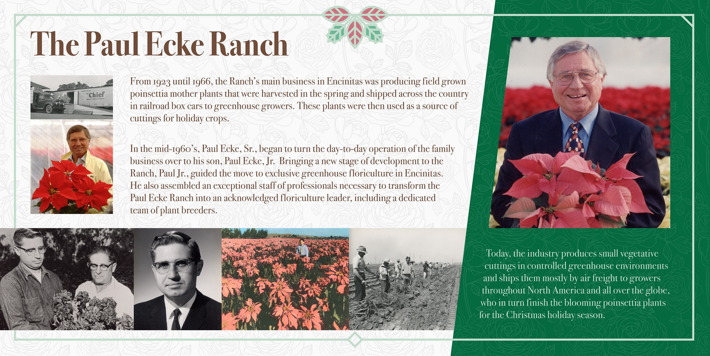 The Paul Ecke Ranch