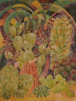 cacti/ Ian