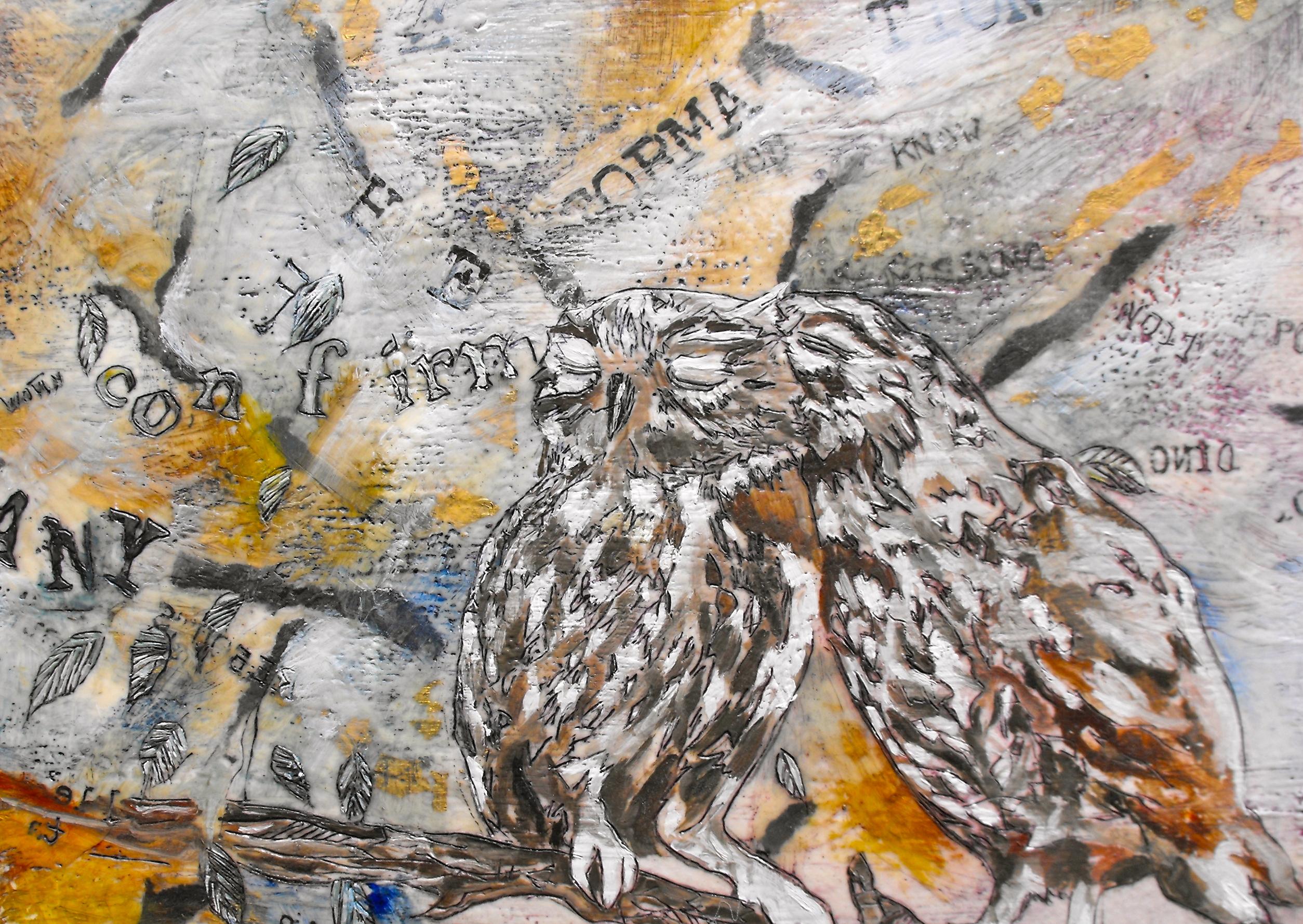 owls/ confirmation