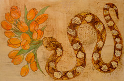 snake and tulips/ for spring