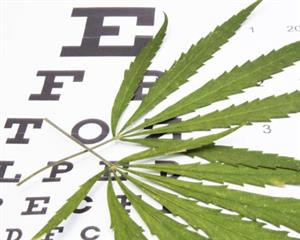 Is Cannabis good for Eye Health