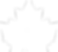 The-CCFR-Logo-White.png
