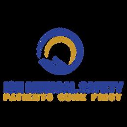 ION-Medical-Safety-Logo-COLOR.png