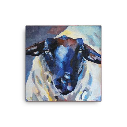 Sheep (Canvas Giclee) by Jennifer Lynn Beaudet