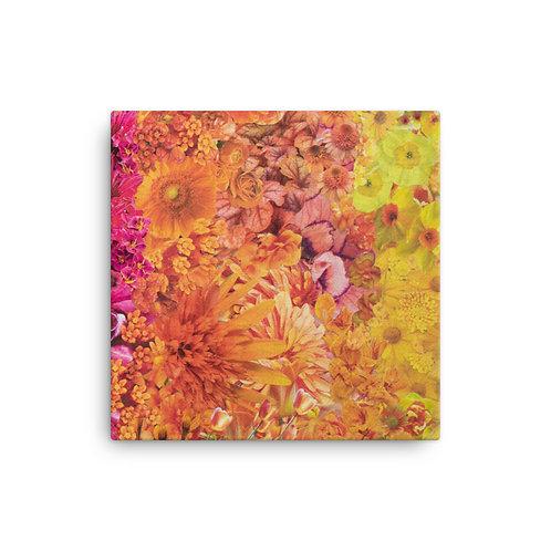 "Rachel Newell ""Rainbow in Bloom 3"" (Canvas Giclee)"