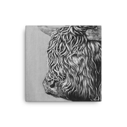 "Hairy Cow (16""x16"" Canvas Giclee) by Carol Greenwood"