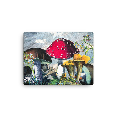 "Rachel Newell ""Mushrooms and Blooms"" (Canvas Giclee)"