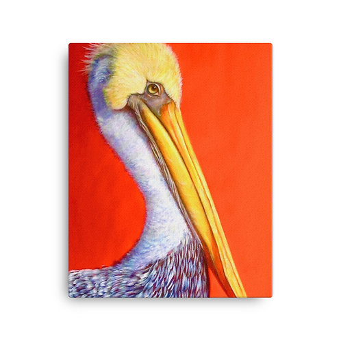 Pelican (Canvas Giclee) by Carol Greenwood