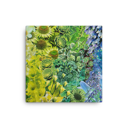 "Rachel Newell ""Rainbow in Bloom 1"" (Canvas Giclee)"
