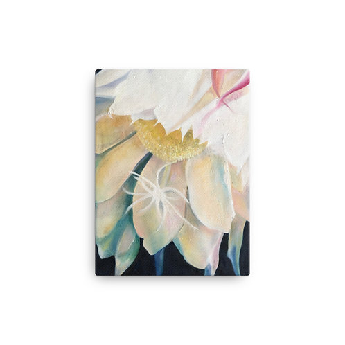 Night Bloom (Canvas Giclee) by Ana dos Santos