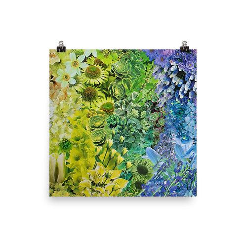 "Rachel Newell ""Rainbow in Bloom 1"""