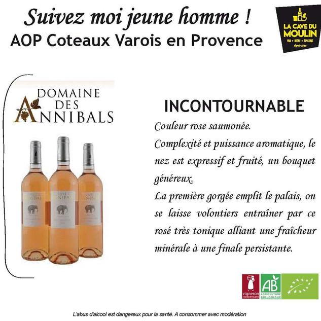 vins- lacavedumoulin (6).jpg