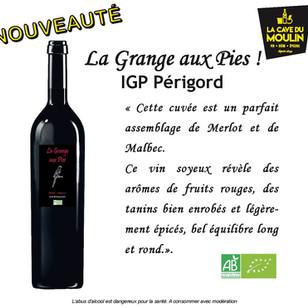 vins- lacavedumoulin (9).jpg