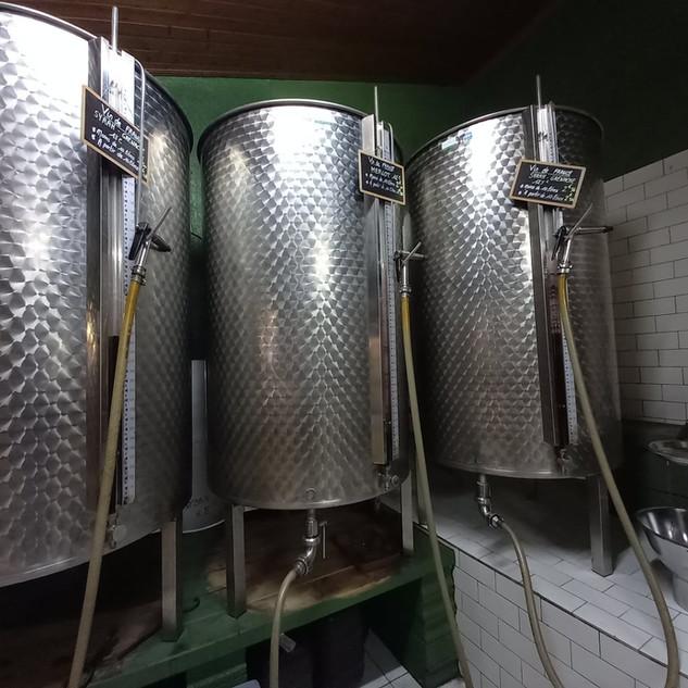 vins- lacavedumoulin (1).jpg