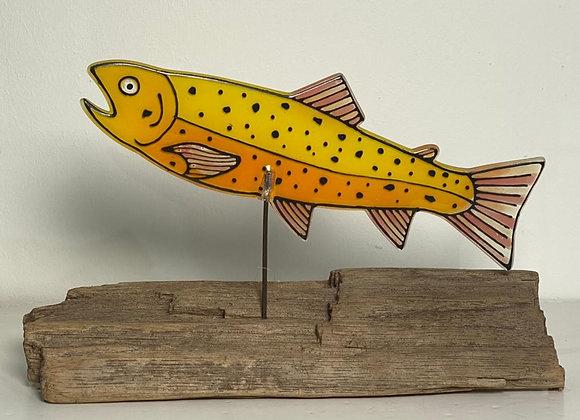 Yellow Salmon