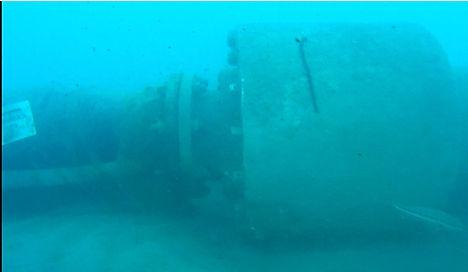 arta coupling under water (2).JPG