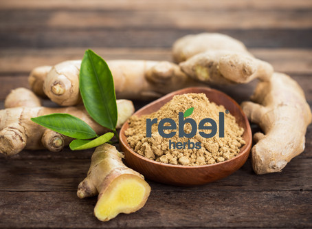 Ginger, The Rebel Herb of the Month