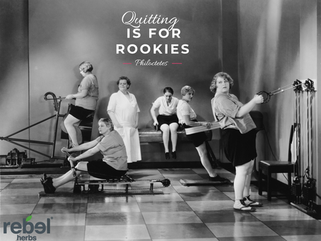 """Quitting is for Rookies"""