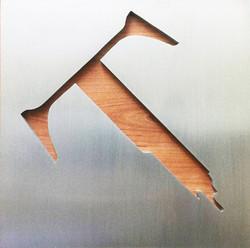 logo tapagebois argent