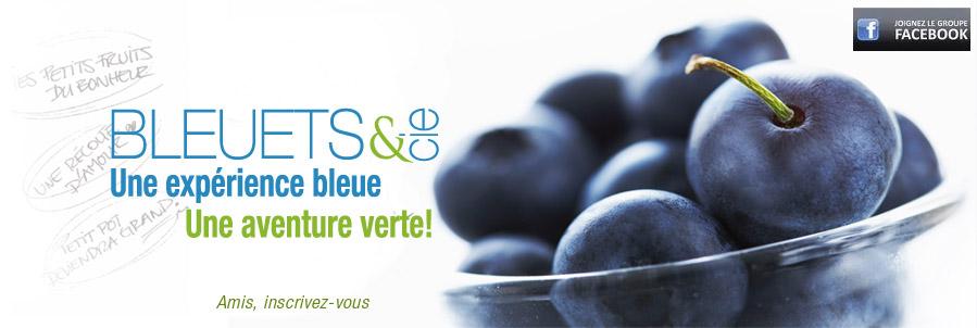 bleuets_et_cie
