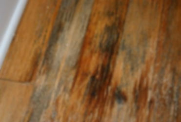 Hardwood-flooring-companies-in-Mill-Creek 
