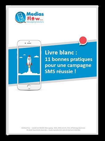 Livre blanc SMS : bonnes pratiques pour reussir sa campagne SMS