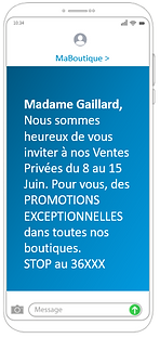 SMS_DRIVE_TO_STORE_CONNECTEUR.PNG