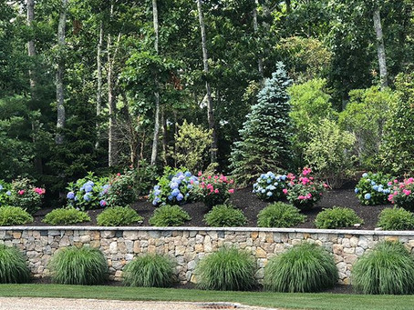 3 Ways Landscaping Can Increase Your Home Value