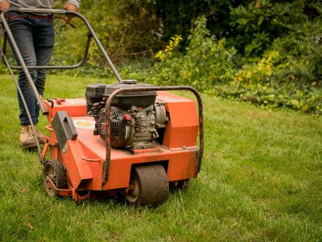 Fall Lawn Care Essentials
