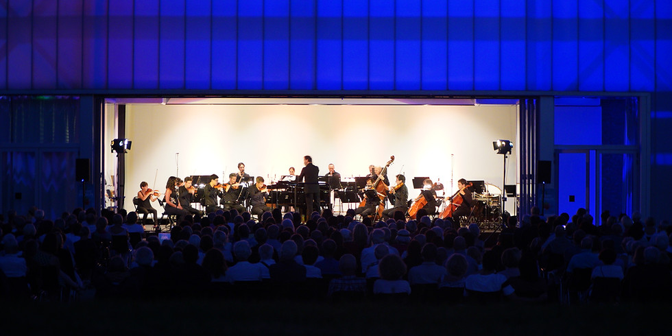 Classic Parc Orchestra