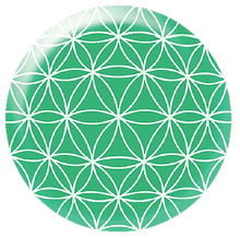 EMF-Bioshield®Tel (20 mm).png