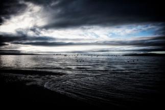 gheese at maxwelton beach