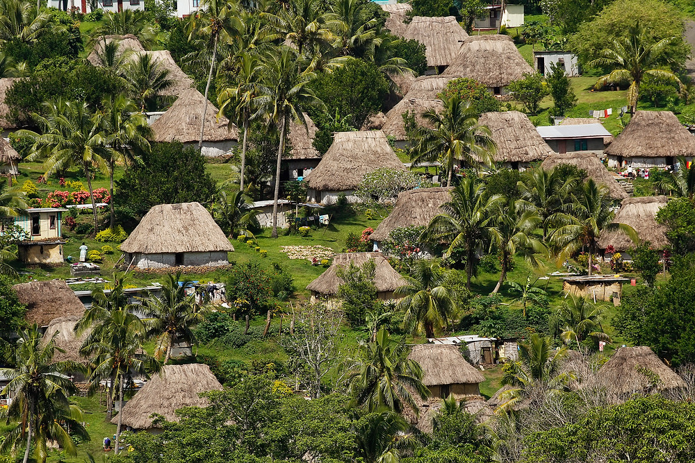 Thatched houses of Navala village