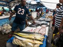 Fiji fishing: the one that got away?