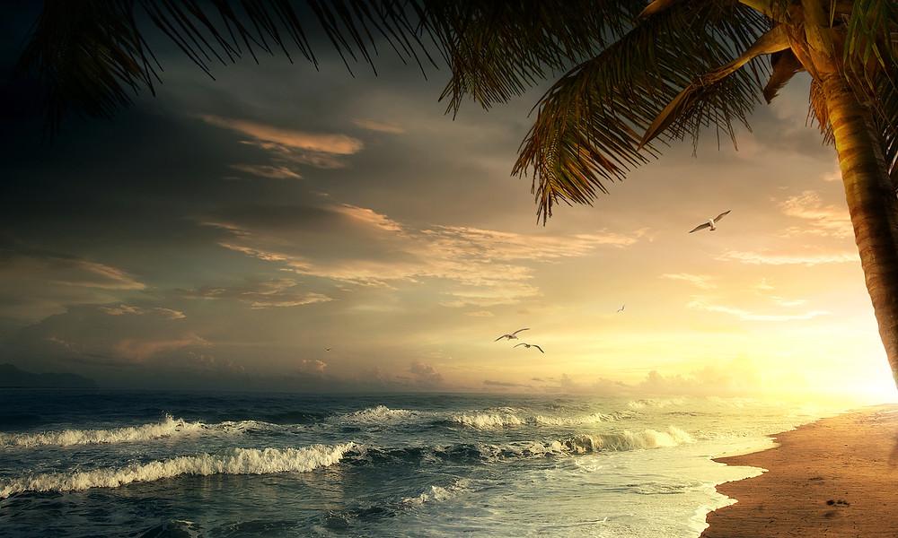 windy Fiji beach at sunset